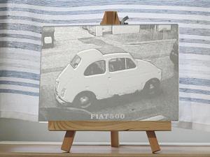 FIAT500_4